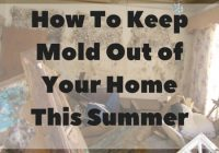 How to keep mold out of your home with the help of Air Boca AC repair.