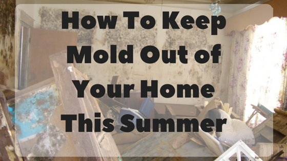 How To: Keep Mold Out of Your Home This Summer
