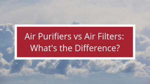 Air Purifiers vs Air Filters: What's the Difference?