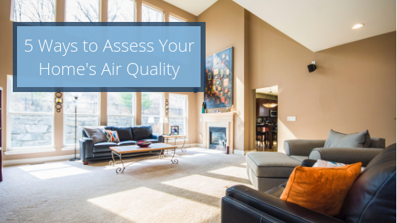 Five Ways to Assess The Air Quality of Your Home